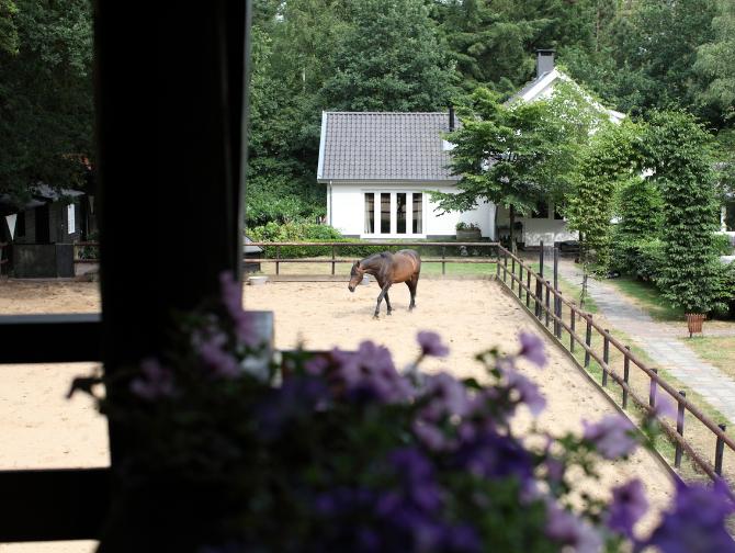 guesthouse-uitzicht-balkon-tuin