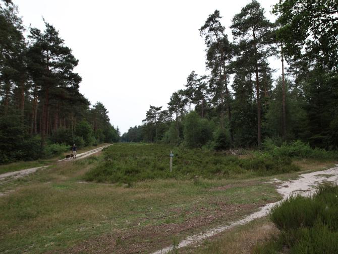 Over - Buitenplaats Elisabeth-natuur-bos