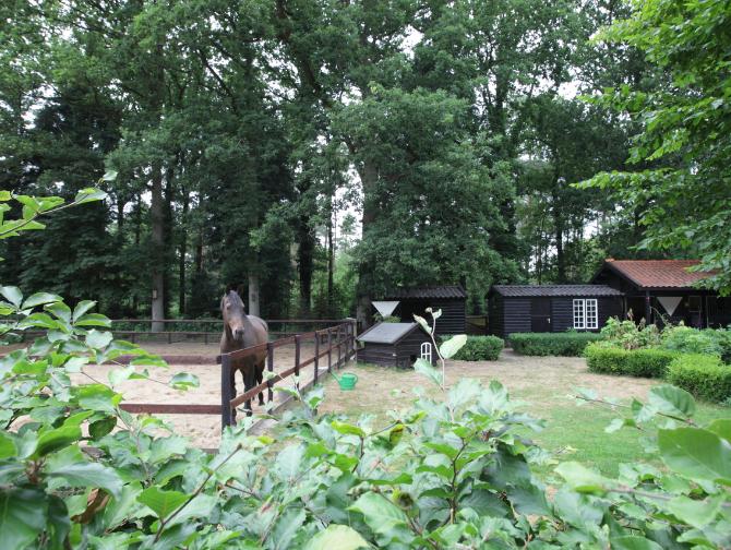 Over - Buitenplaats Elisabeth-tuin-buitenbak